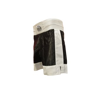 Kick Boxing short with stripe ***Finale sale***